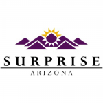 Surprise web2